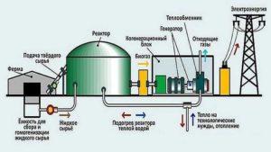 Получение биогаза на участке своими руками