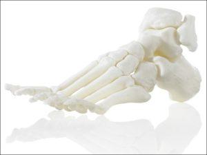 Искусственная кость своими руками